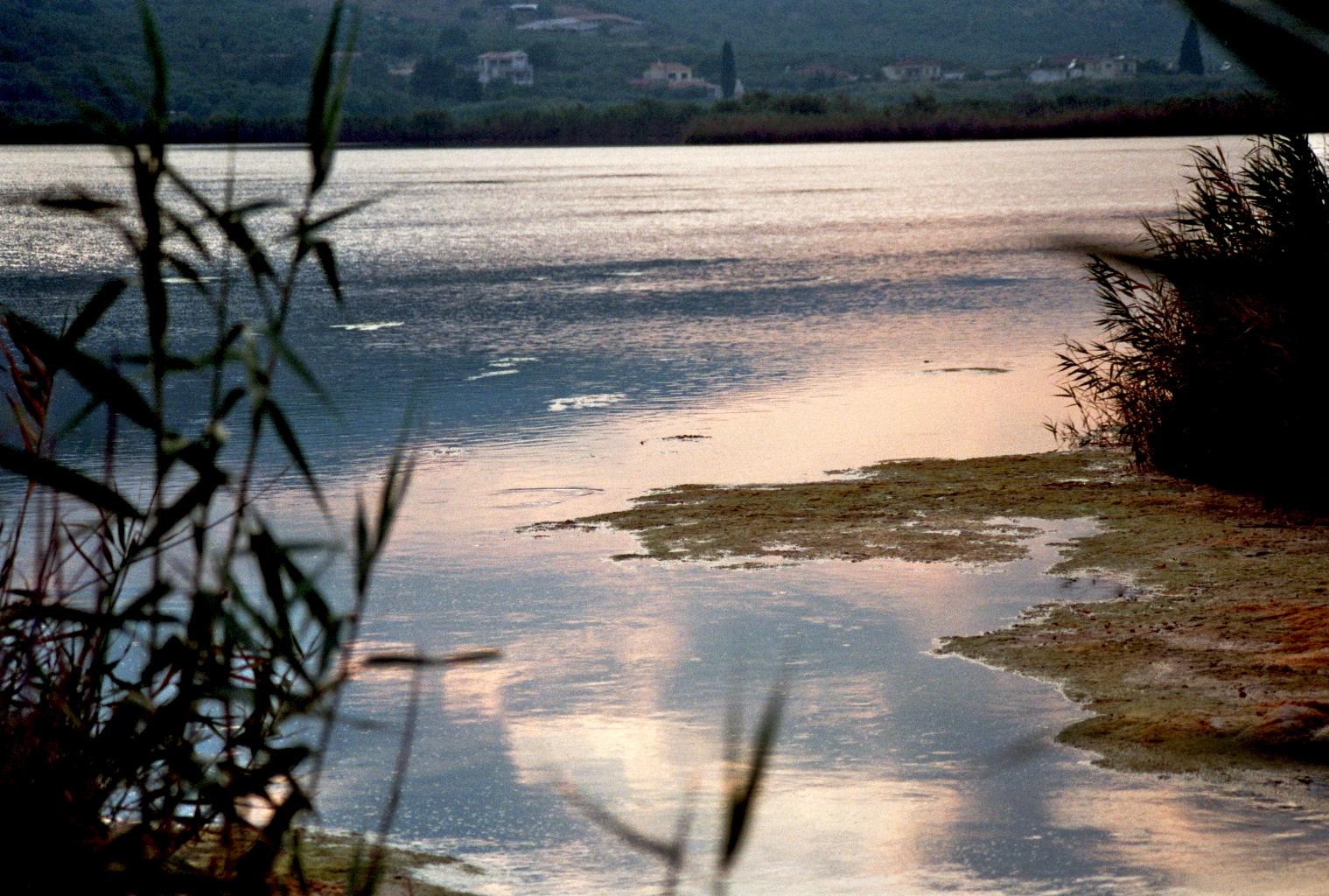 Naturschutzgebiet: See im Abendlicht