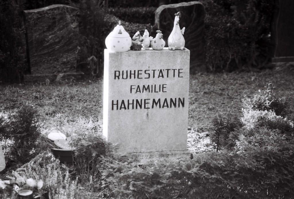 Verwunschene Orte in Berlin (Rosenthal) Berlin miscellaneous nature gallery Pankow Verwunschene Orte