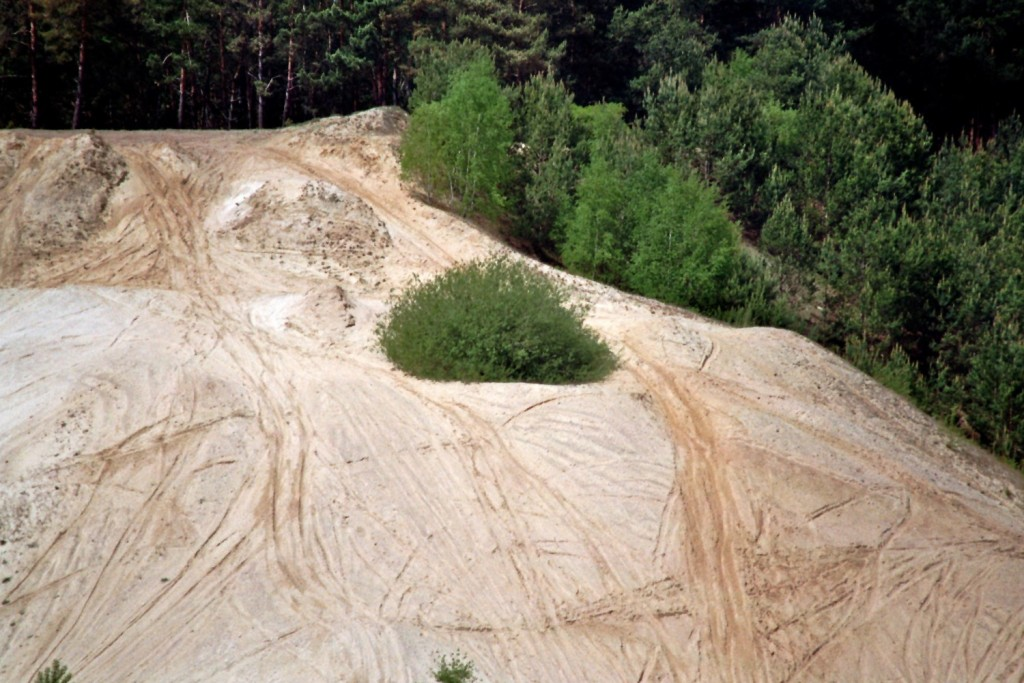 Biotop Kiesgrube (2)
