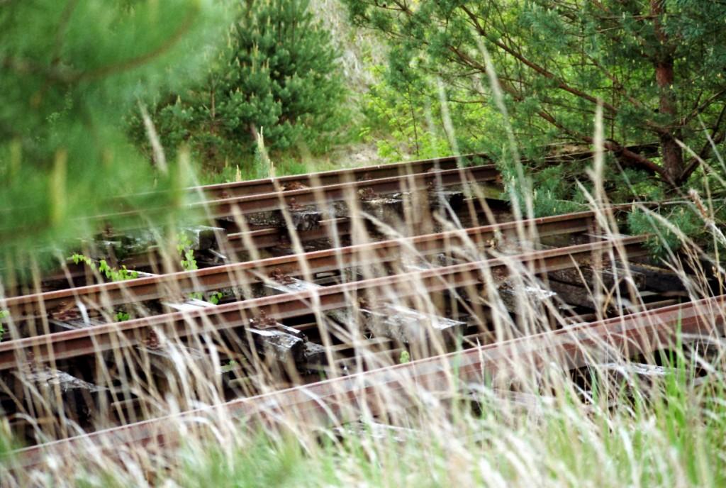 Alte Gleise am Kiesberg