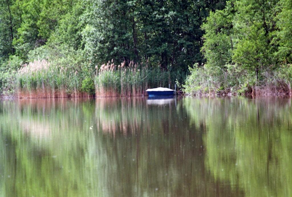 Verwunschene Orte in Brandenburg (Pätz und Bestensee) Brandenburg Dahme-Spreewald nature gallery Verwunschene Orte