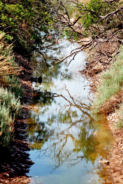 Der eiskalte Fluss