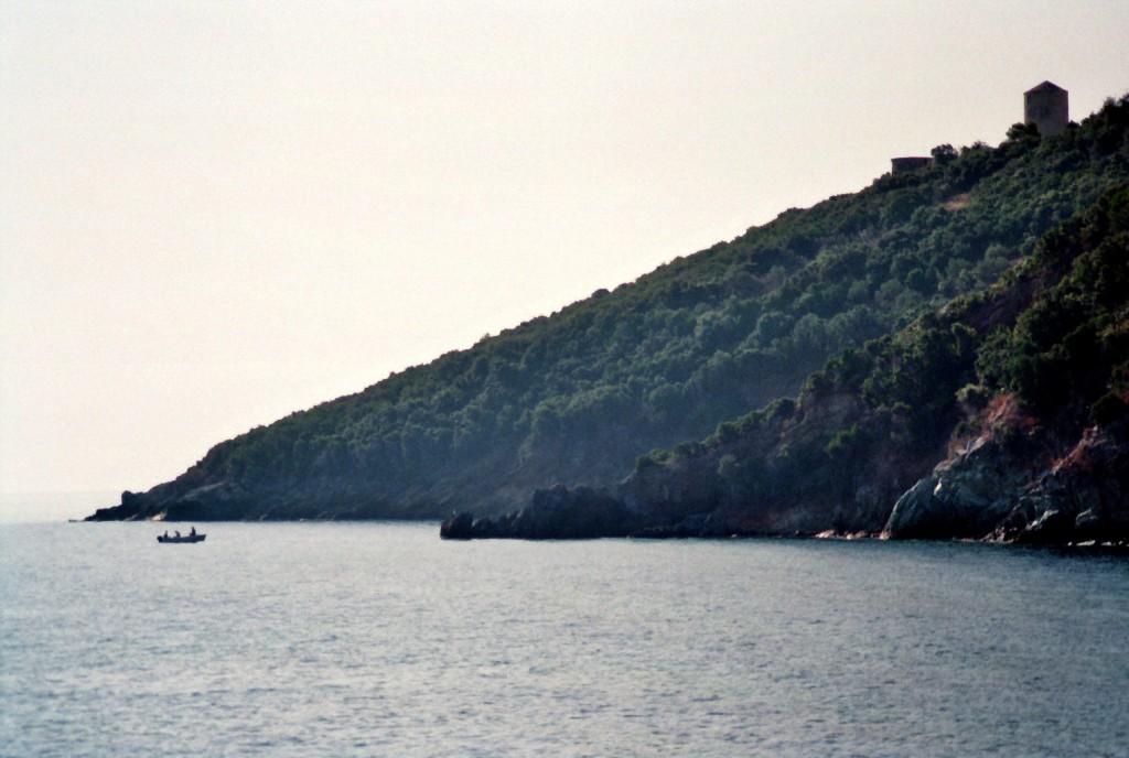 Ufer im Morgennebel