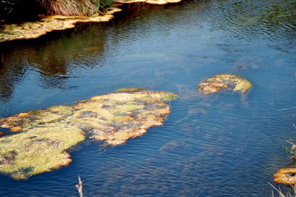 Flusslauf