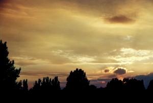 Guten Abend Berlin