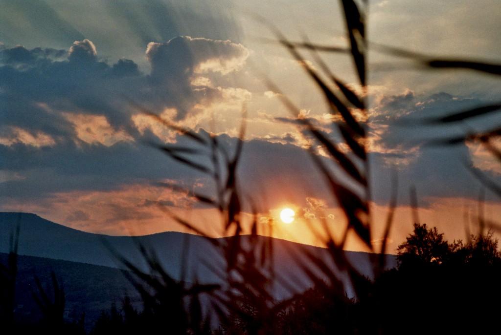 Das Naturschutzgebiet bei Paralia Astros (Peloponnes/Griechenland) Europa Griechenland nature gallery