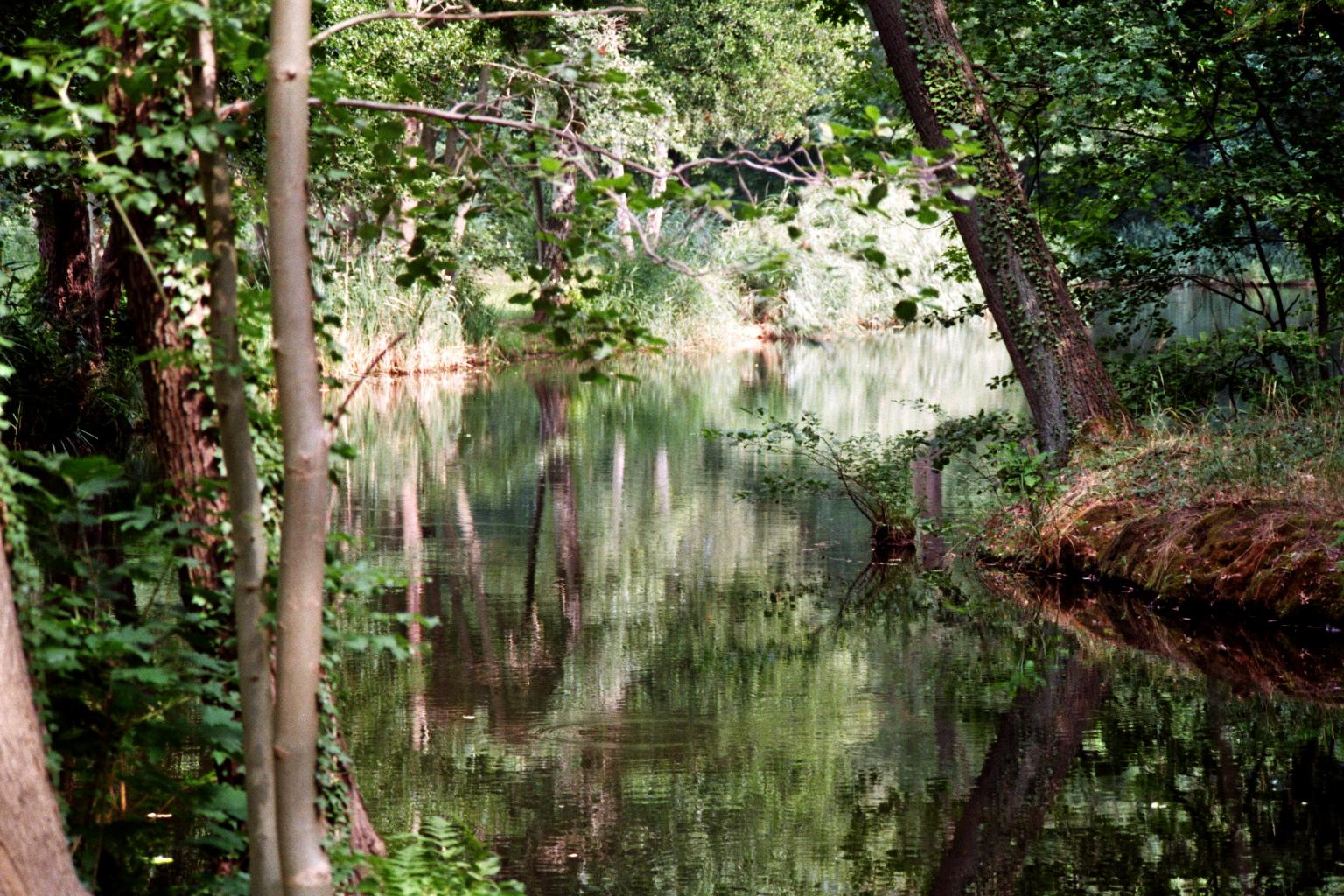 Straupitz Spiegelsee