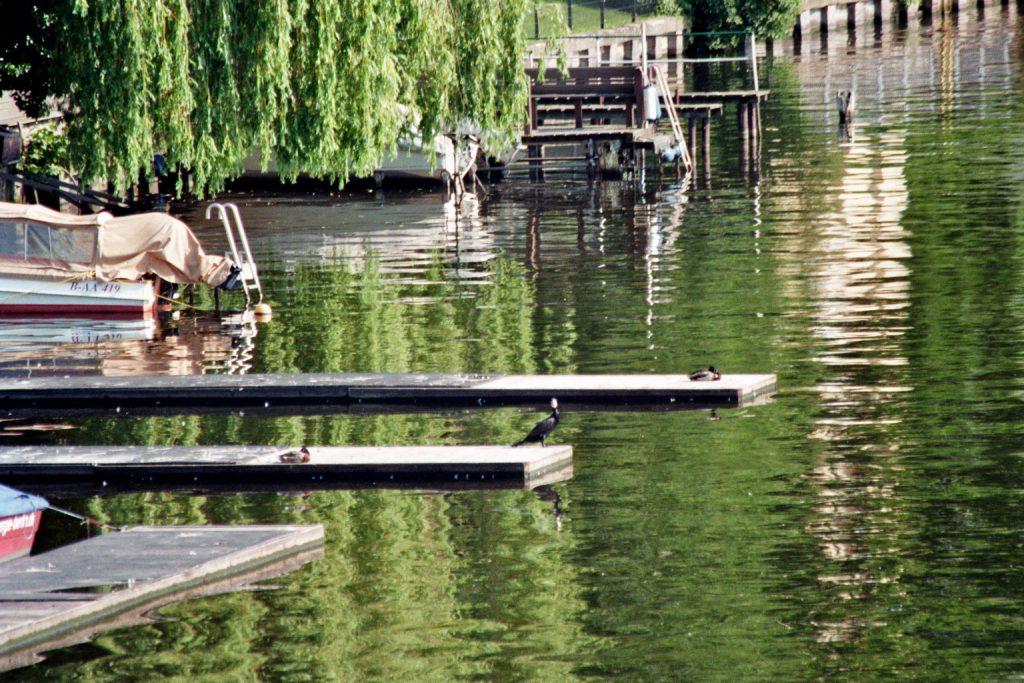 Uferbevölkerung
