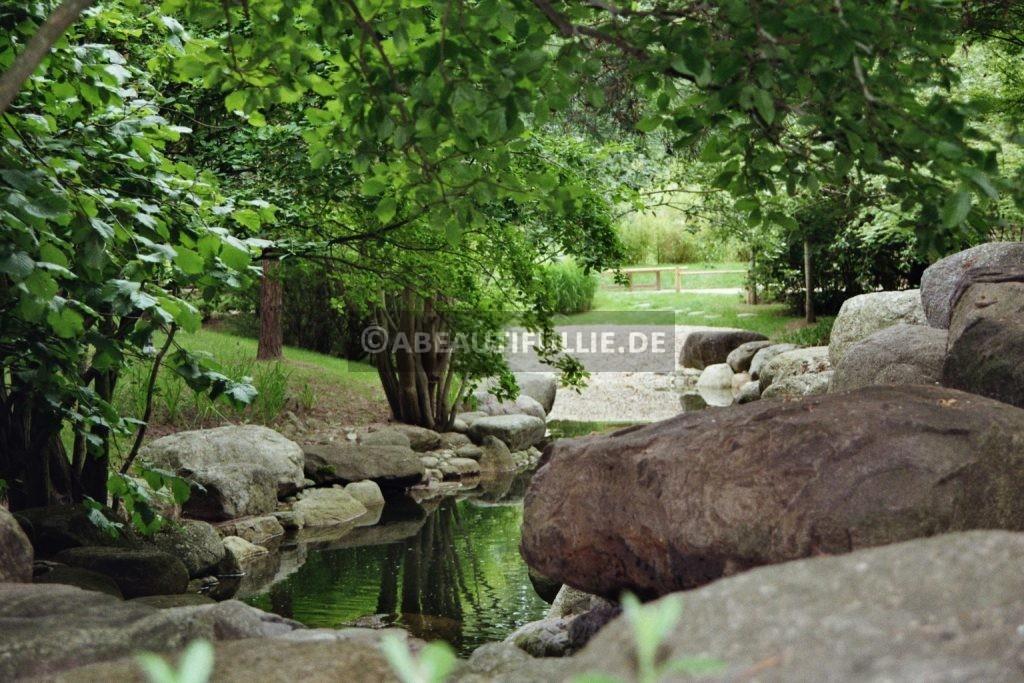Im Japanischen Garten 1