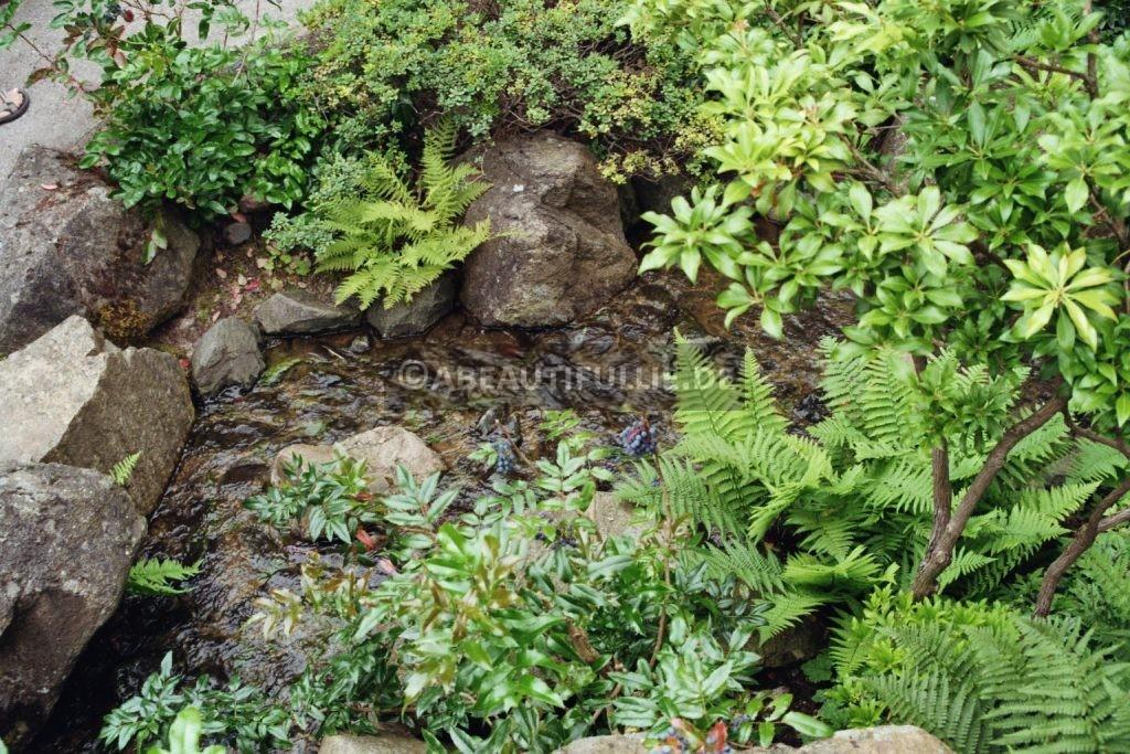 Im Japanischen Garten 2