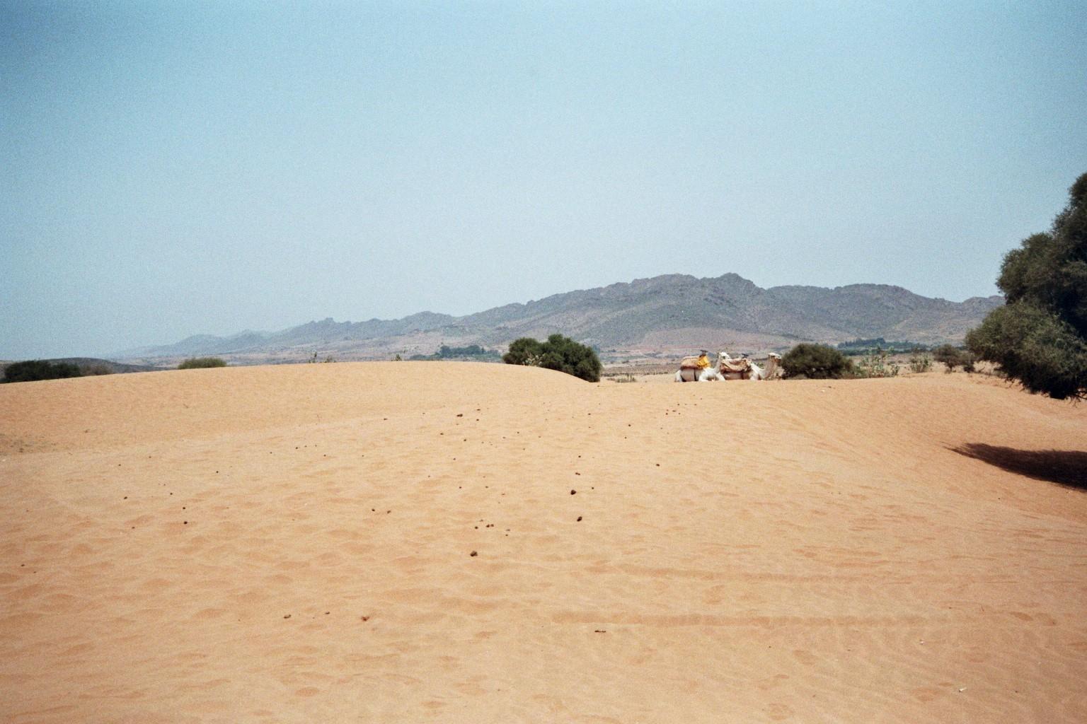Wüstenimpression