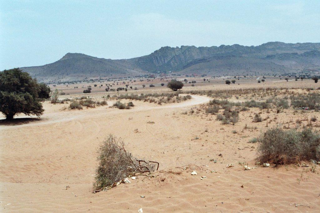Kleine Sahara mit Arganbäumen und Atlas