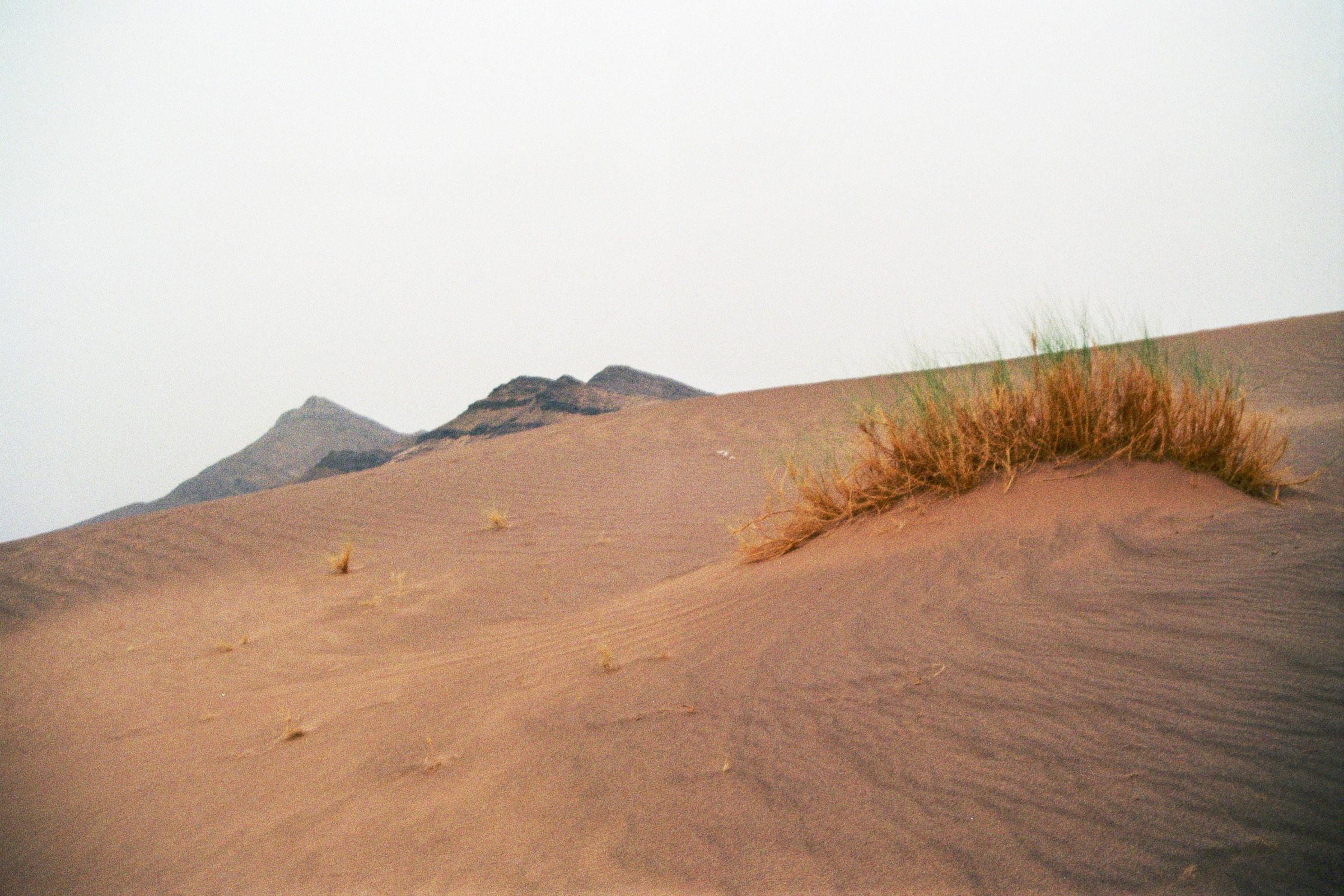 Sahara-Düne