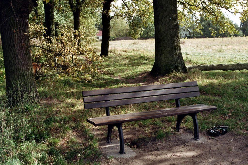 Verwunschene Orte (Schöneiche bei Berlin) Herbst Brandenburg Deutschland Europa Oder-Spree Schöneiche