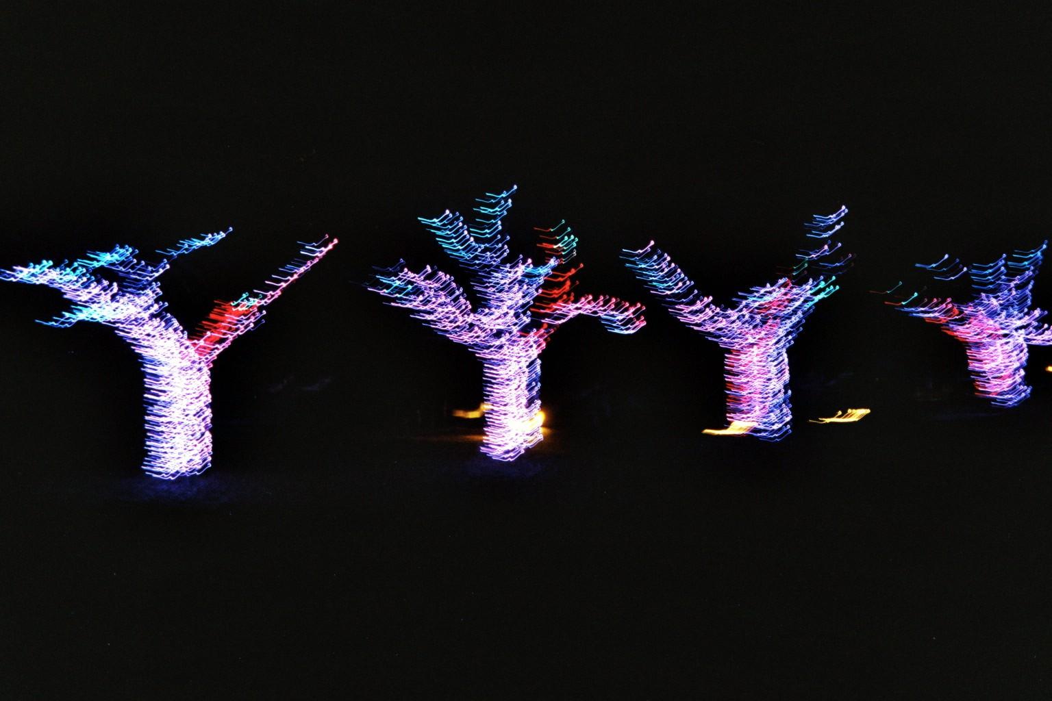 Tanzende Lichterbäume