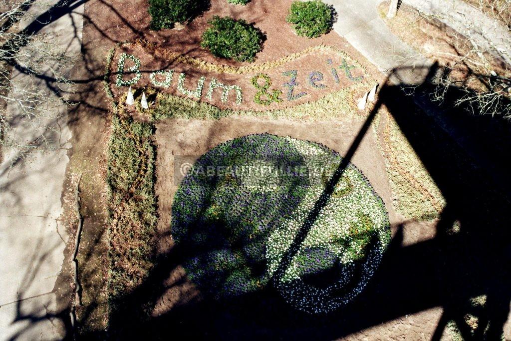Verwunschene Orte (Baumkronenpfad Beelitz-Heilstätten) architecture & technique nature gallery Potsdam Potsdam-Mittelmark uncategorized Verwunschene Orte