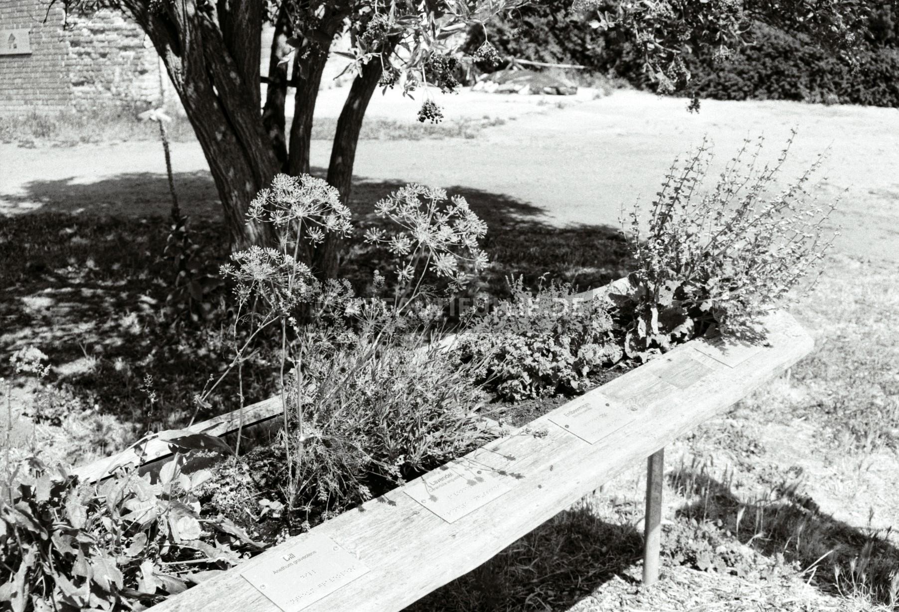 Gewürzgarten