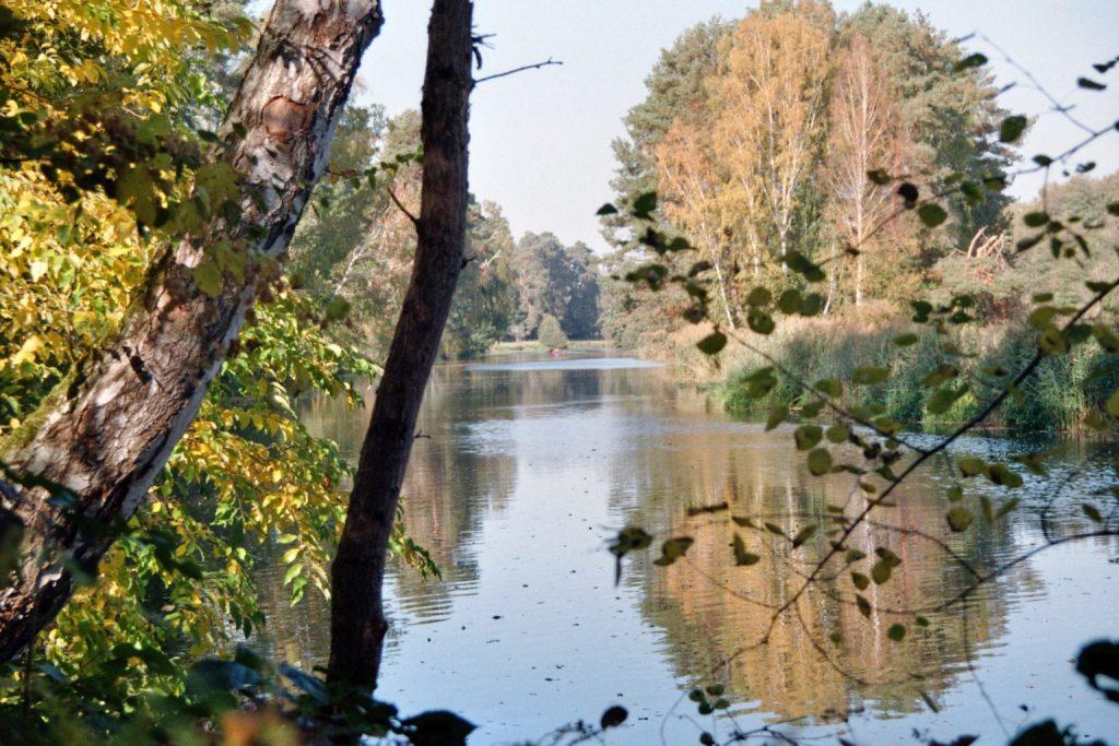 Verwunschene Orte (Dahme-Seenland, Hammer/ Brandenburg) Brandenburg Dahme-Spreewald Deutschland Europa nature gallery Verwunschene Orte