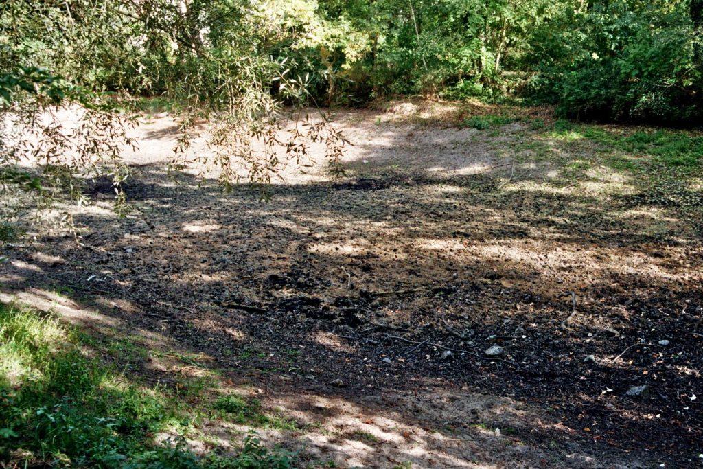 Spreewaldpark Trockenteich