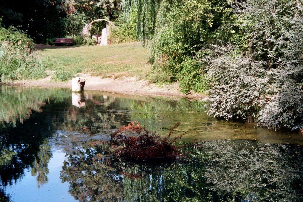 Spreewaldpark Karpfenteich