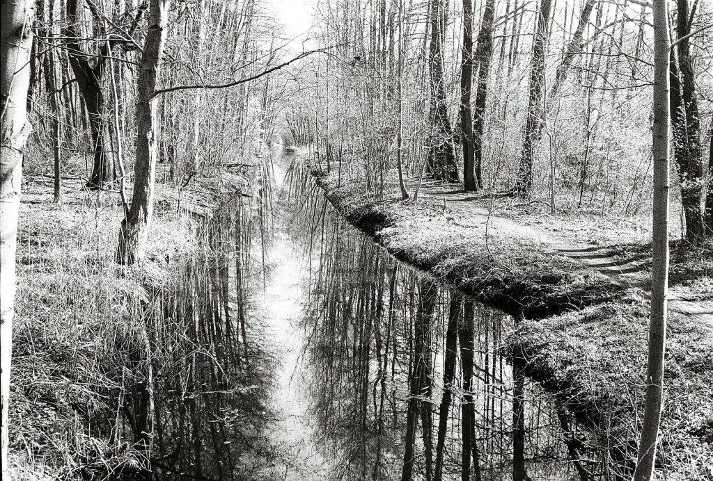 Am Zülowgraben