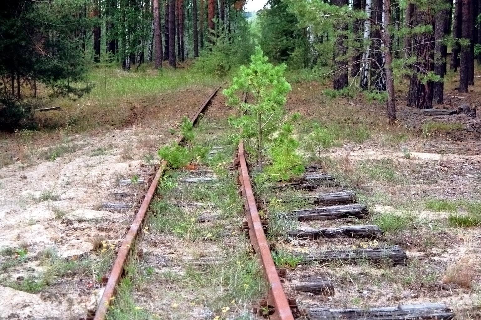 Alter Schienenstrang