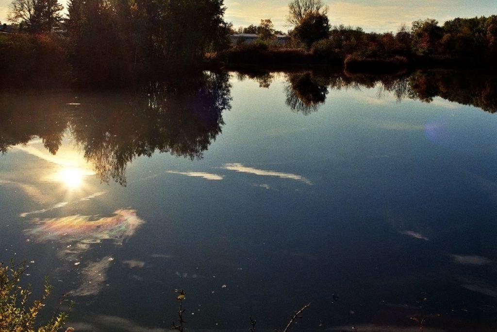 Abendsonne (2)