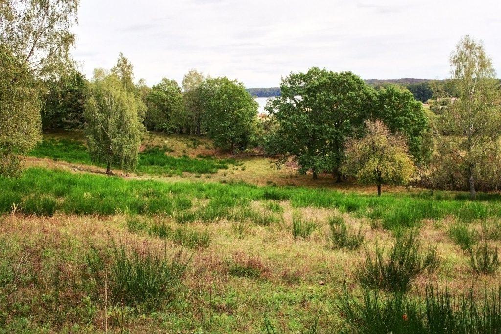 Verwunschene Orte: Feldberger Seenlandschaft Deutschland Europa Mecklenburg Vorpommern nature gallery uncategorized Verwunschene Orte