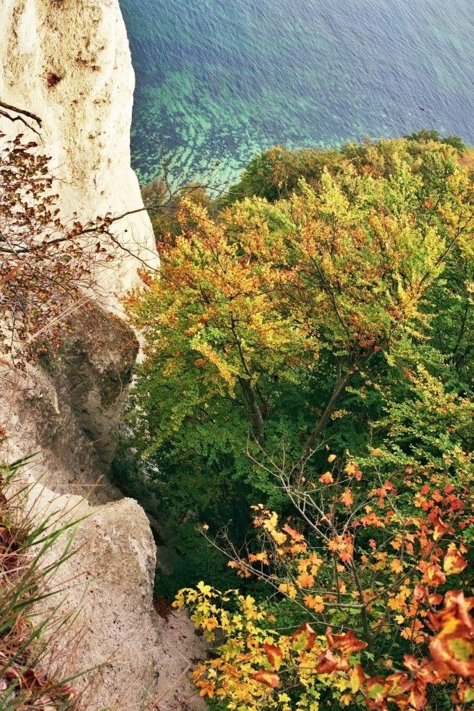 Weltkulturerbe Nationalpark Jasmund mit Herthasee und Kreidefelsen (Rügen/Mecklenburg-Vorpommern) Insel Rügen Mecklenburg Vorpommern nature gallery Verwunschene Orte