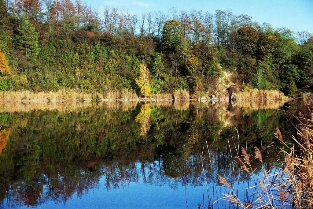 Verwunschene Orte (Naturschutzgebiet Sperenberger Gipsbrüche) Brandenburg Deutschland Europa nature gallery Teltow-Fläming uncategorized Verwunschene Orte