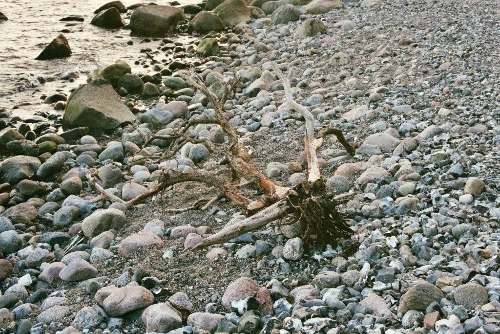 Verwunschene Orte: Kap Arkona und die Kreidefelsen (Rügen) Deutschland Europa Insel Rügen Mecklenburg Vorpommern nature gallery Verwunschene Orte