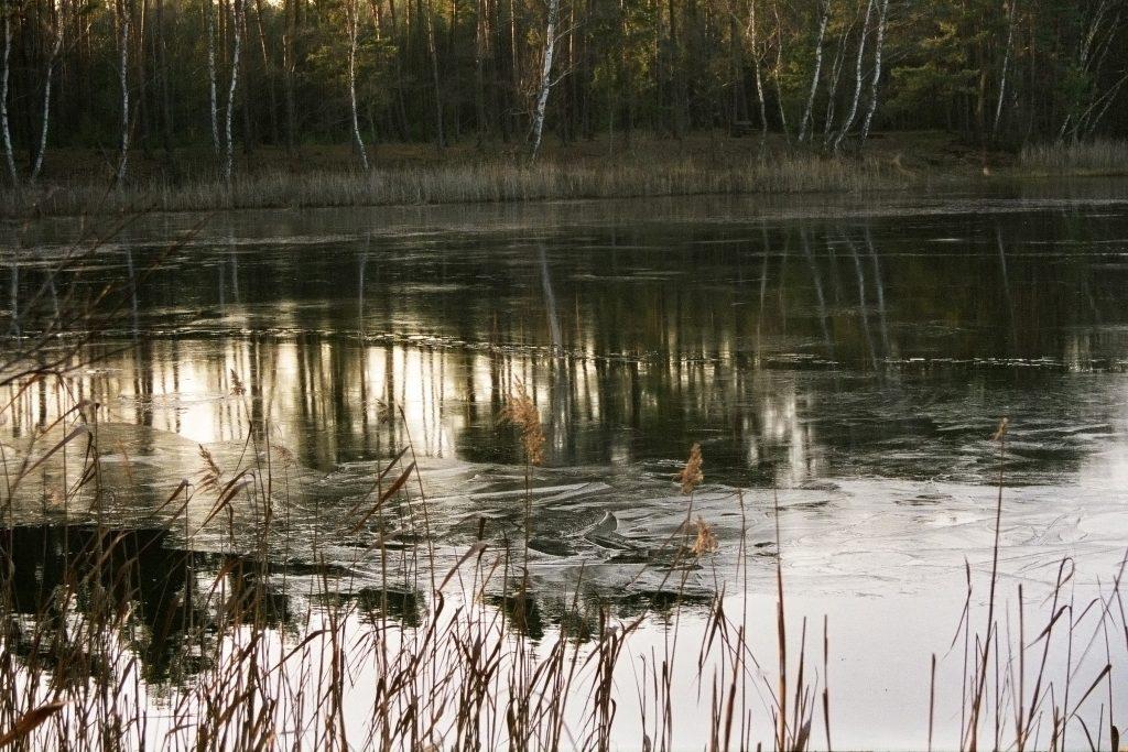 Verwunschene Orte: Milasee Brandenburg Dahme-Spreewald Deutschland Europa nature gallery Verwunschene Orte
