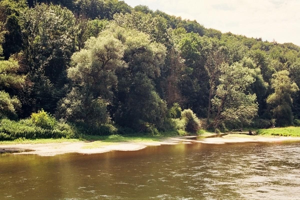 Badestrand an der Donau