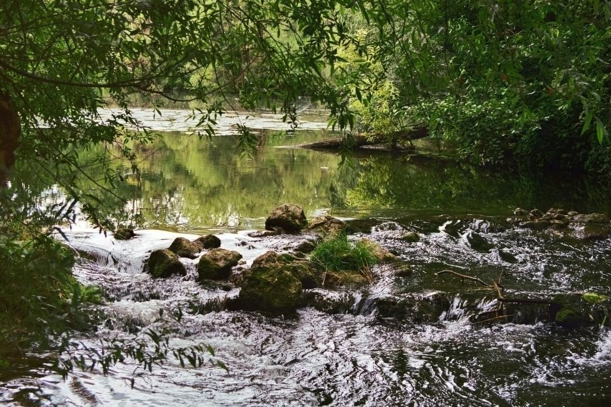 Naturparadies Altmühl