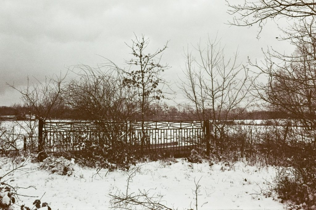 Verwunschene Orte: Am Nottekanal (im Schnee) Brandenburg Dahme-Spreewald Deutschland Europa nature gallery Teltow-Fläming uncategorized Verwunschene Orte